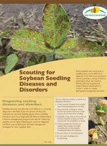 Progress in Developing IPM Tools for Diagnosis and Management of Soybean Seedling Diseases