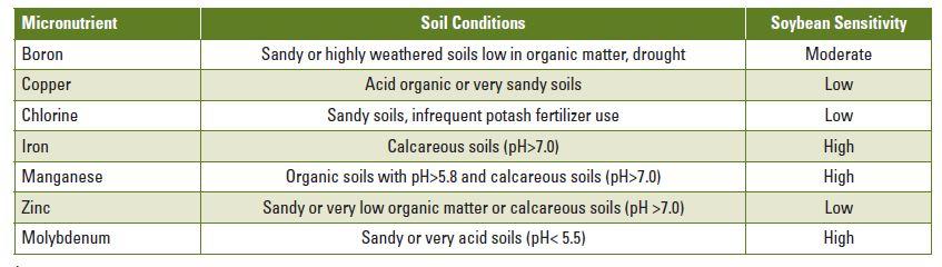 soybean micronutrients